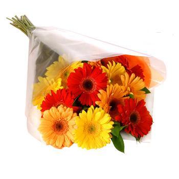 Karisik renklerde gerbera buketi  Mersin çiçek satışı