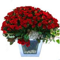 Mersin İnternetten çiçek siparişi   101 adet kirmizi gül aranjmani