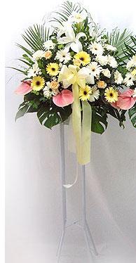 Mersin çiçek gönderme   perförje çiçegi dügün çiçekleri