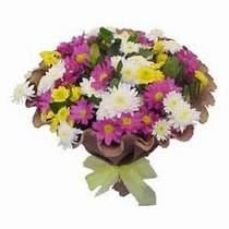 Mersin çiçek online çiçek siparişi  Mevsim kir çiçegi demeti