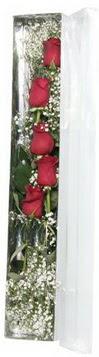Mersin online çiçekçi , çiçek siparişi   5 adet gülden kutu güller