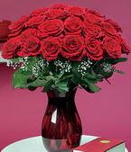 Mersin çiçek siparişi sitesi  11 adet Vazoda Gül sevenler için ideal seçim