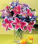 Mersin çiçekçiler  Sevgi bahçesi Özel  bir tercih