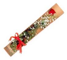 1 adet kirmizi gül  Mersin çiçek online çiçek siparişi