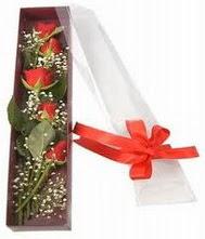 kutu içinde 5 adet kirmizi gül  Mersin çiçek gönderme sitemiz güvenlidir
