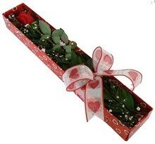 Tek kirmizi gül kutu içerisinde  Mersin çiçek siparişi vermek
