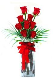 Mersin çiçek online çiçek siparişi  9 adet mika yada cam vazoda gül tanzimi
