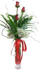 Mersin online çiçekçi , çiçek siparişi  3 adet kirmizi gül vazo içerisinde