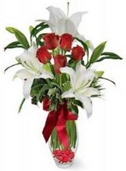 Mersin çiçek yolla  5 adet kirmizi gül ve 3 kandil kazablanka
