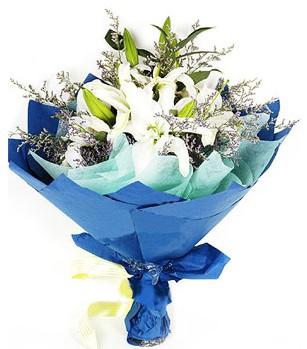 Mersin hediye çiçek yolla  4 adet dal kazablankadan görsel buket