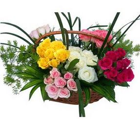 Mersin kaliteli taze ve ucuz çiçekler  35 adet rengarenk güllerden sepet tanzimi