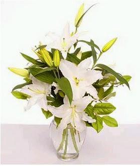 Mersin hediye sevgilime hediye çiçek  2 dal cazablanca vazo çiçeği