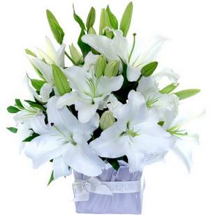 Mersin anneler günü çiçek yolla  2 dal cazablanca vazo çiçeği