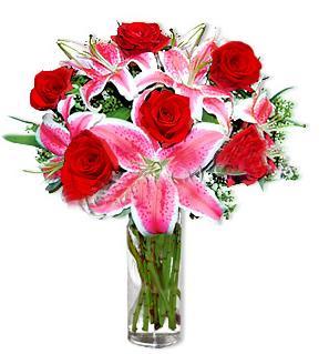 Mersin anneler günü çiçek yolla  1 dal cazablanca ve 6 kırmızı gül çiçeği