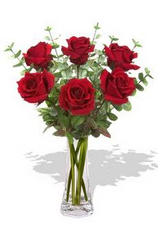 Mersin yurtiçi ve yurtdışı çiçek siparişi  6 kırmızı gül vazosu