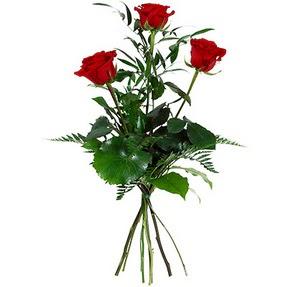 Mersin çiçek , çiçekçi , çiçekçilik  3 adet kırmızı gülden buket
