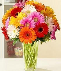 Mersin internetten çiçek satışı  15 adet gerbera çiçek vazosu