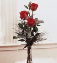 Mersin çiçek yolla , çiçek gönder , çiçekçi   Vazoda 3 adet güzel gül