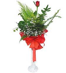 Mersin hediye çiçek yolla  Cam vazoda masum tek gül