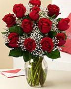 Sevgilime hediye 9 adet 1.ci kalite gül  Mersin hediye çiçek yolla