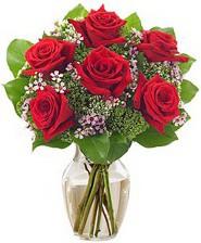 Kız arkadaşıma hediye 6 kırmızı gül  Mersin çiçek gönderme sitemiz güvenlidir