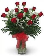 Sevgilime hediye çiçek 9 güllü vazo