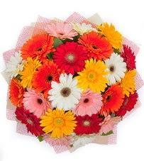 15 adet renkli gerbera buketi  Mersin online çiçek gönderme sipariş