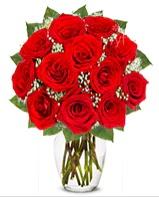 12 adet vazoda kıpkırmızı gül  Mersin çiçekçi telefonları