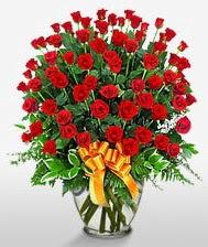 Görsel vazo içerisinde 101 adet gül  Mersin çiçekçi telefonları
