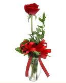 vazo içerisinde 1 adet kırmızı gül  Mersin çiçek online çiçek siparişi
