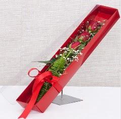 Kutu içerisinde 3 adet kırmızı gül  Mersin çiçek gönderme