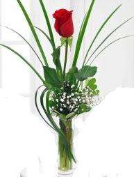 Cam içerisinde 1 kırmızı gül  Mersin 14 şubat sevgililer günü çiçek