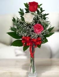 Camda 2 kırmızı 1 beyaz gül  Mersin kaliteli taze ve ucuz çiçekler