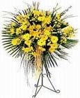 Mersin online çiçek gönderme sipariş  Sari kazablanka Ferforje
