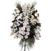 Mersin çiçekçi telefonları  Ferforje beyaz renkli kazablanka