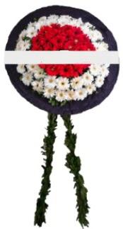 mozele çiçeği  Mersin çiçekçi mağazası