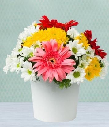 Seramik Vazoda Gelbera ve Papatya  Mersin hediye sevgilime hediye çiçek
