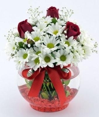 Fanusta 3 Gül ve Papatya  Mersin çiçek yolla , çiçek gönder , çiçekçi