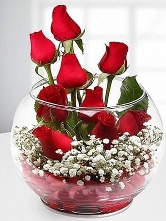 Kırmızı Mutluluk fanusta 9 kırmızı gül  Mersin online çiçekçi , çiçek siparişi