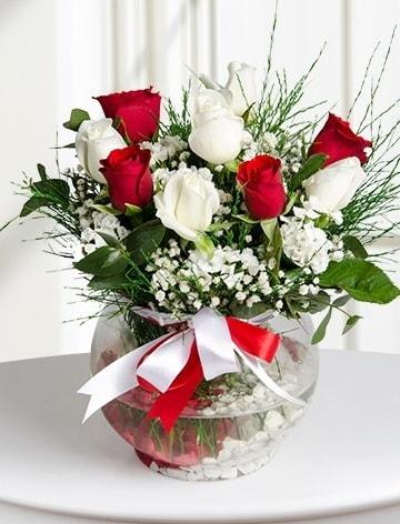 Aşk Küresi  5 beyaz 5 kırmızı gül fanusta  Mersin çiçek yolla , çiçek gönder , çiçekçi
