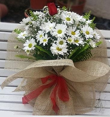 Papatya 1 adet kırmızı gül buketi  Mersin İnternetten çiçek siparişi