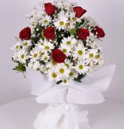 7 adet kırmızı gül ve papatyalar krizantem  Mersin çiçek yolla , çiçek gönder , çiçekçi