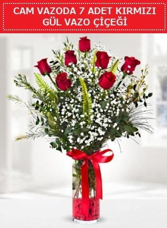 Cam vazoda 7 adet kırmızı gül çiçeği  Mersin 14 şubat sevgililer günü çiçek