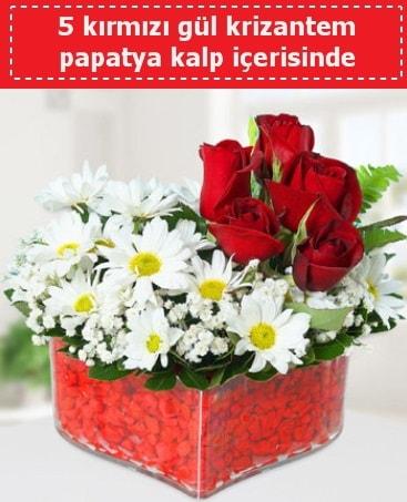 mika kalp içerisinde 5 kırmızı gül papatya  Mersin hediye sevgilime hediye çiçek