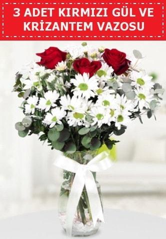 3 kırmızı gül ve camda krizantem çiçekleri  Mersin hediye sevgilime hediye çiçek