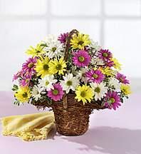 Mersin İnternetten çiçek siparişi  Mevsim çiçekleri sepeti